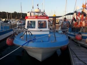 Sabor 880 fisher