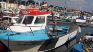 Sabor 750 fisher