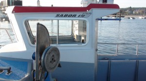 Sabor 600 fisher