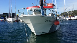 Sabor 995 fisher